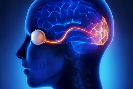 ابداع یک ایمپلنت مغزی که امکان دیدن برخی تصاویر را برای افراد نابینا فراهم میکند